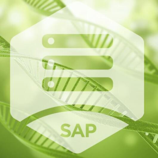 SLES for SAP